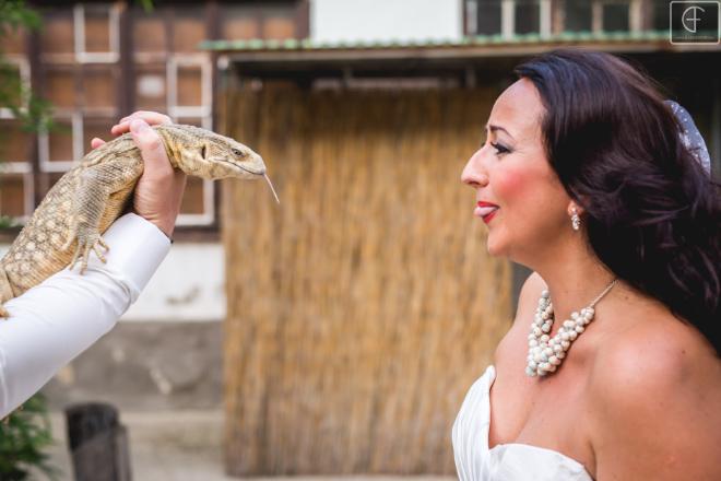 varánusz esküvő
